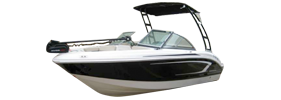 19 H2O Ski & Fish Chaparral Boat Covers